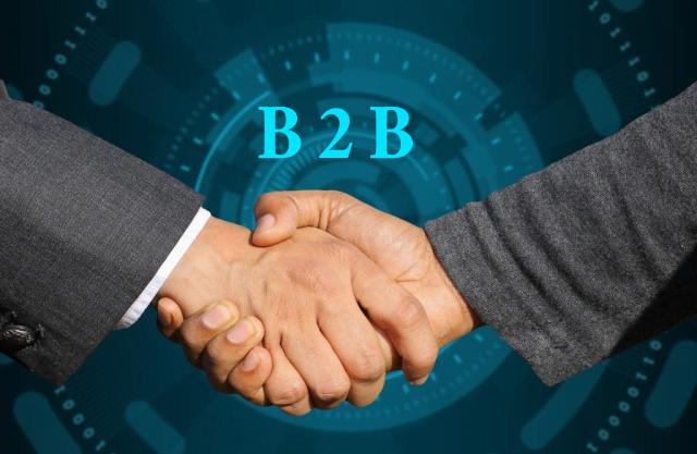 B2B, comenzi, interfata parteneri, facturare, revanzatori